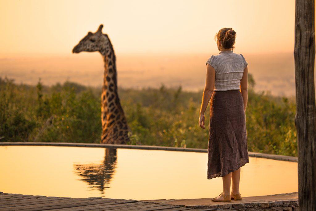 safari hotel experience